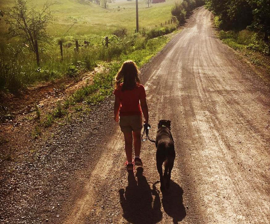 Charlottesville, VA dog training. Walking dog on leash.
