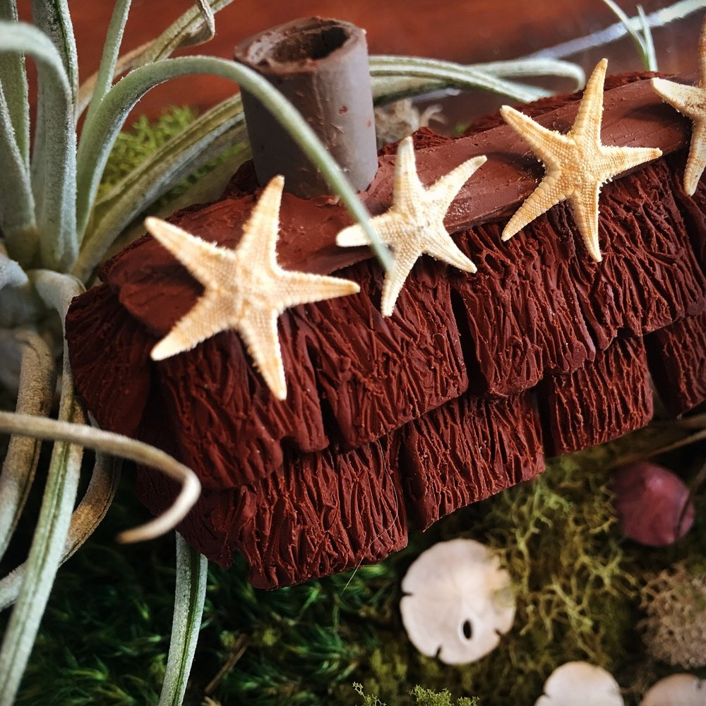 Cottage Terrarium + Starfish Dome - Fimo clay fairy terrarium, with a combination of woodland and sea elements.