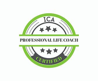ICA PLC.jpg