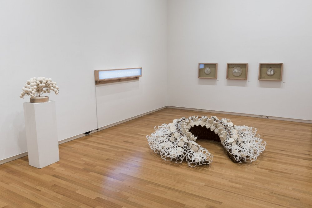 Intricate Observations X2 installation view