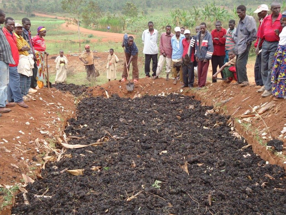 Organic Manure Production