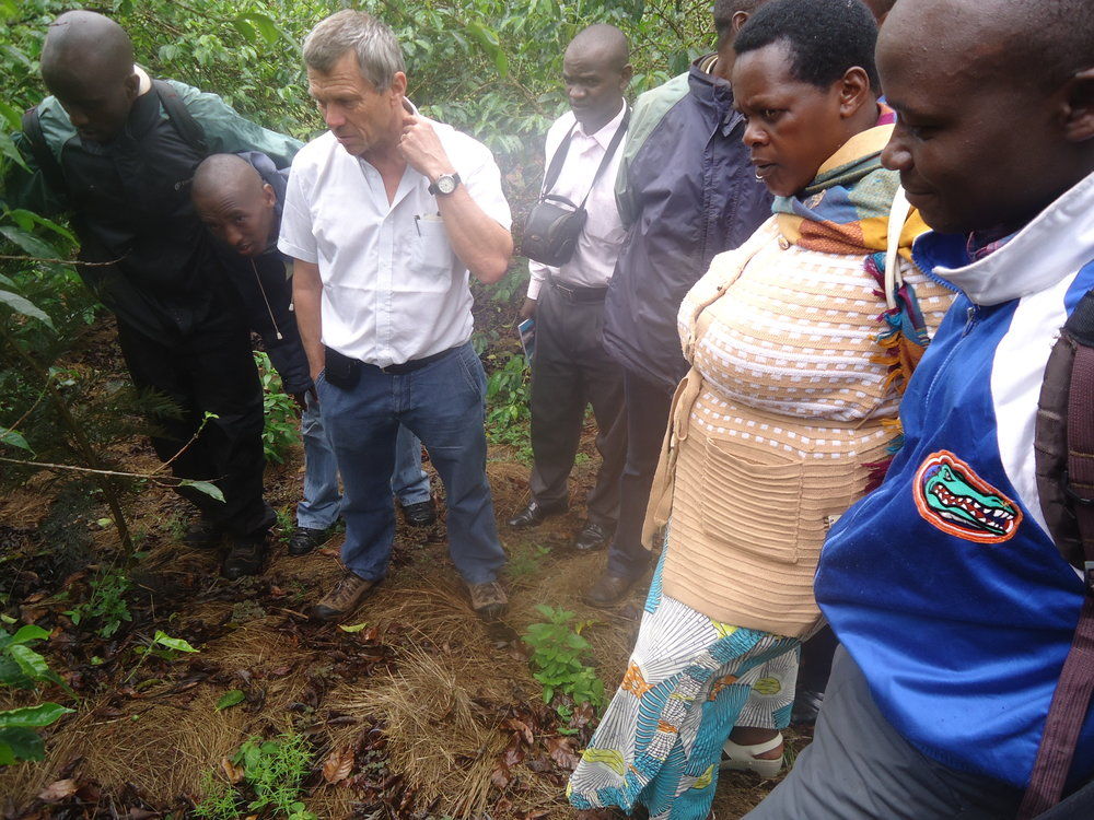 Hands on Training from CIRAD