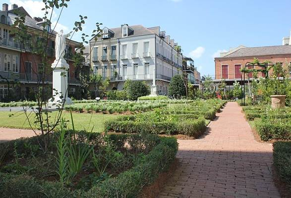 ST. LOUIS CATHEDRAL — Vista Landscaping
