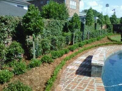 Landscaping_Poolside2.jpg