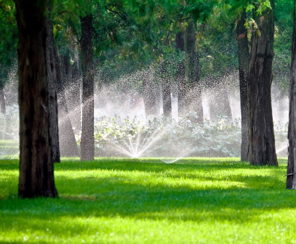 Irrigation_Sprinkler_System_Landscaping.jpg