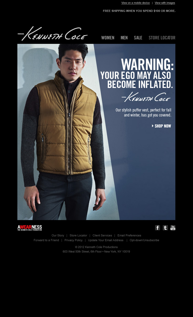 K01533_KCNY_FA12_Mens-Yellow-Puffer-Vest-Email.jpg