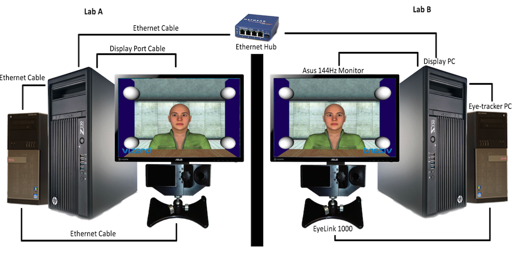DiVA (Dual interactive eye tracking with Virtual anthropomorphic Avatars)