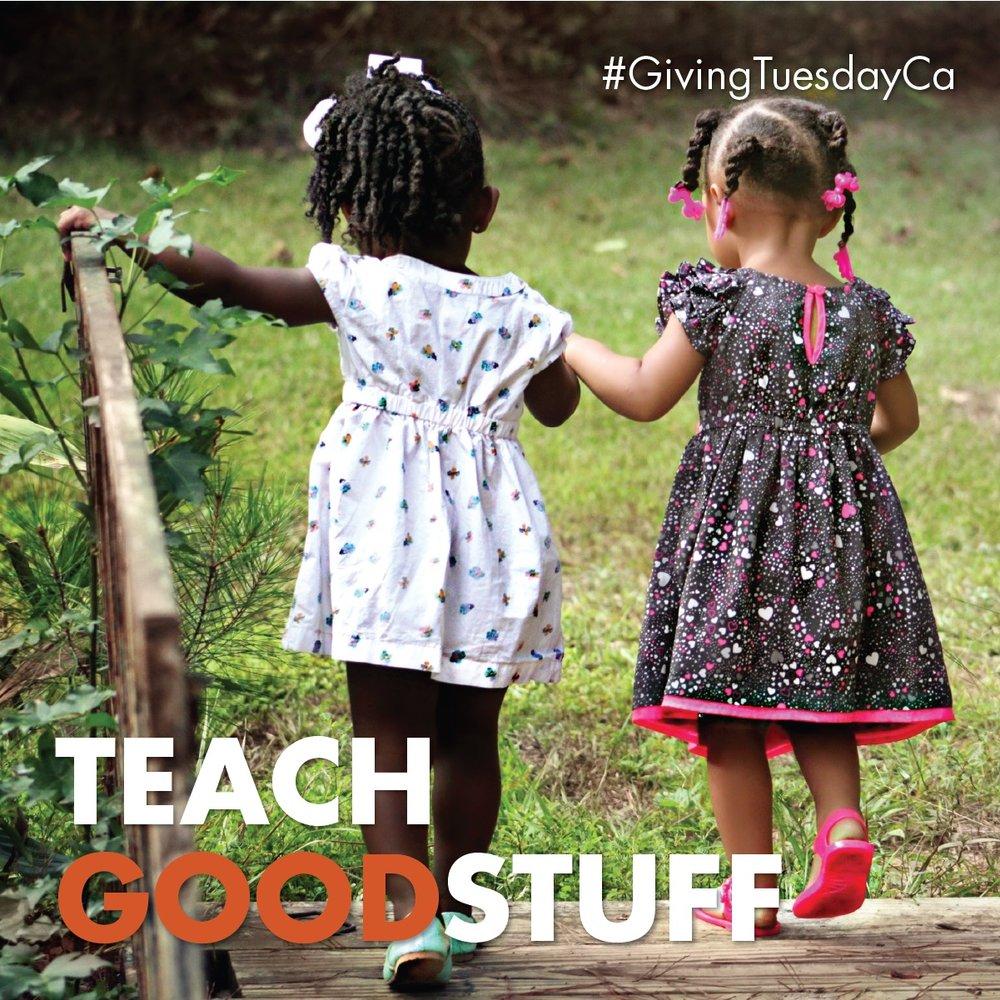 TeachGoodStuff-01_1200x1200.jpg