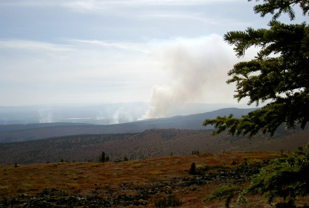 Wildfires approaching Moose Meadow