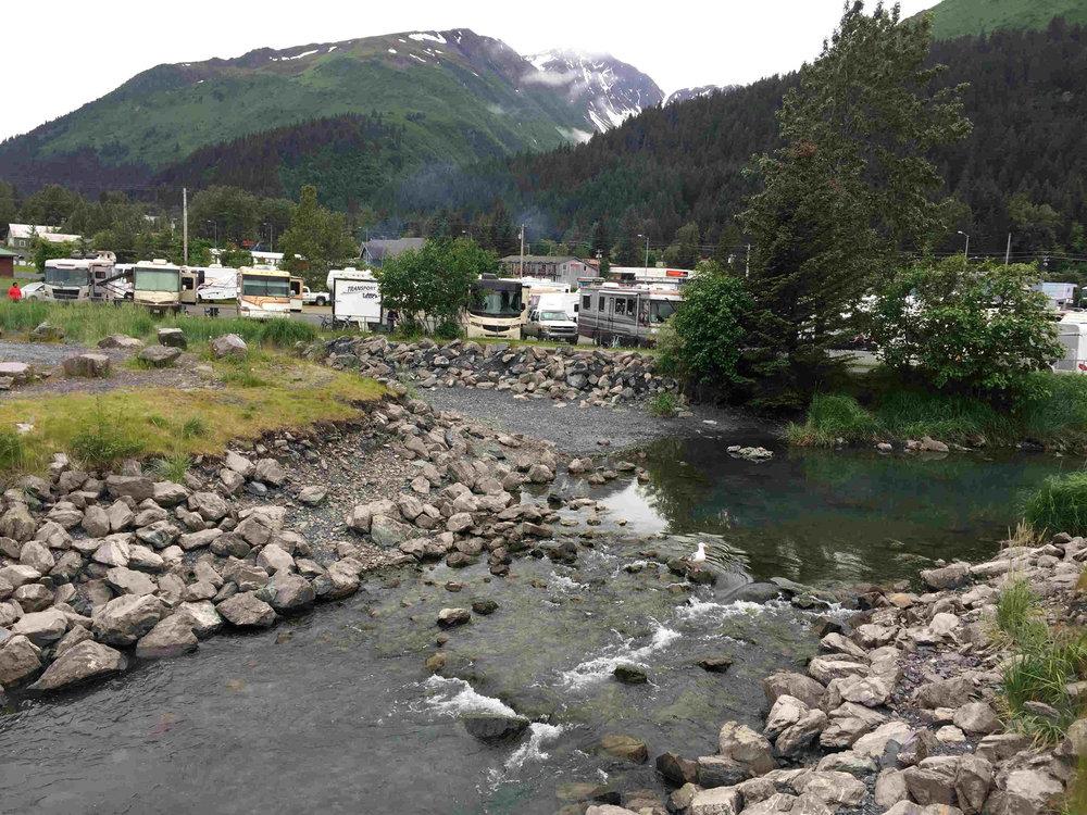 creek near campground