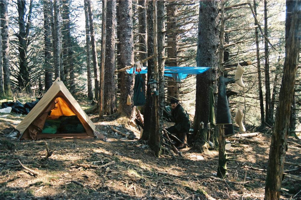 campsite-afognak