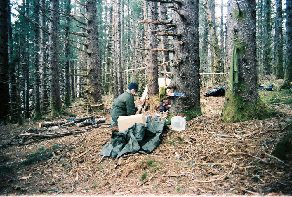 camp-sitka-spruce-afognak.jpg