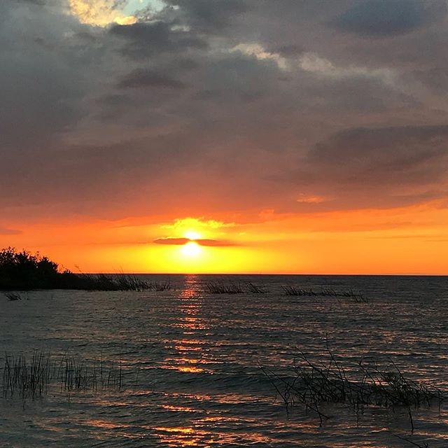 Lake Michigan sunsets are my favorite! #puremichigan #lakemichigan #freshcoast #saltfree #nofilterneeded #sunset