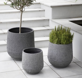 normal_set-of-three-concrete-planters forest and co.jpg