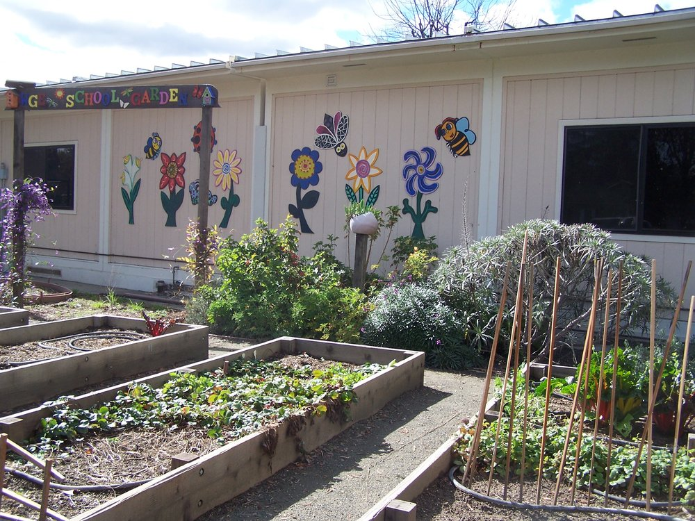 Willow Glen Elementary Garden
