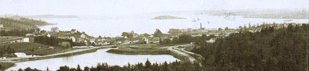 Irishtown can be seen in this historical photo of Sullivan's Pond. It is the area around the pond and South towards the harbour.
