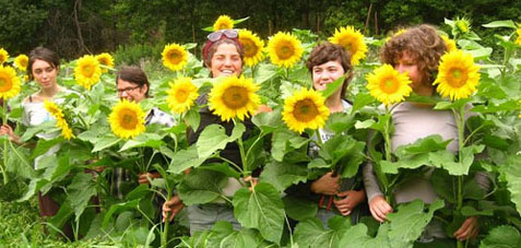 Among the sunflowers at age 21, Earth Sky Time Farm in Manchester, Vt.