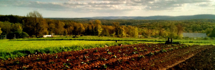 The Anthill Farm in Honesdale, PA (photo by Lawrence Braun)