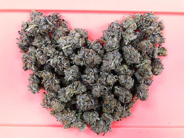 Happy Valentine's Day from JAHnetics. If you forgot flowers, we've got you covered. 💚💚💚💚💚