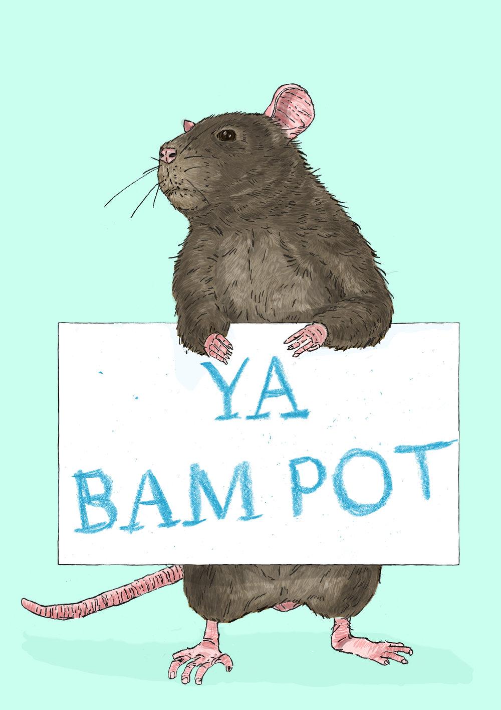 Rat 2.jpg