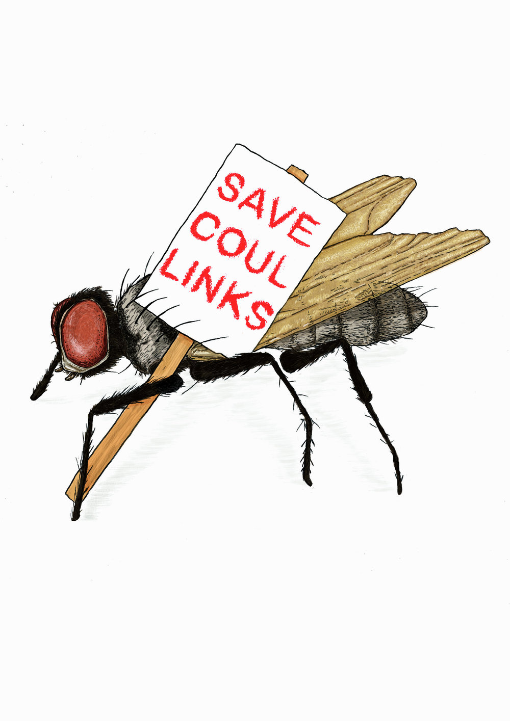 Save Coul Links