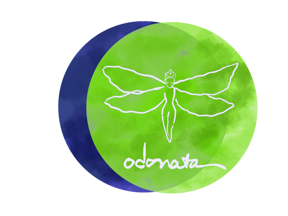 Odonata Creative's logo, designed by Ali Ann Brooks of Libra Rising Art.
