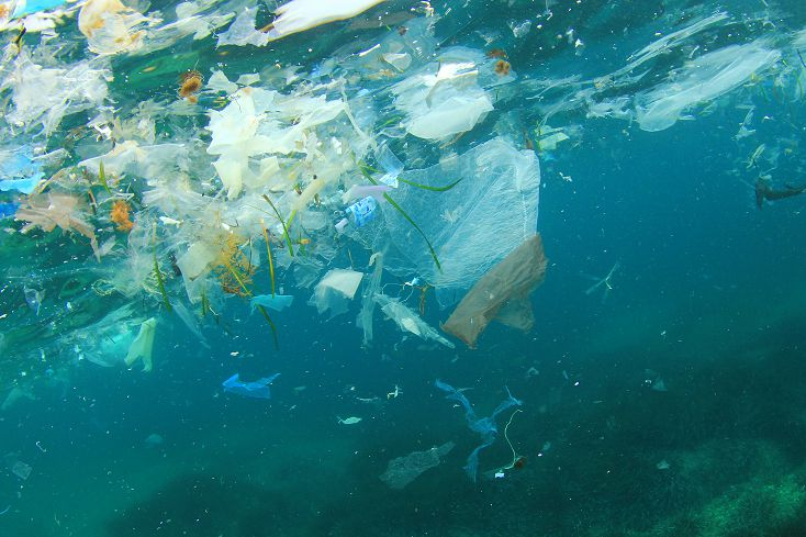 """VISION: CLOSED LOOP   """"The best would be if we were all not there!"""" Friederike von Wedel-Parlow talks Closed Loop. Spoiler alert: plastic recycling isn't as great as some companies would have you believe.   MORE."""