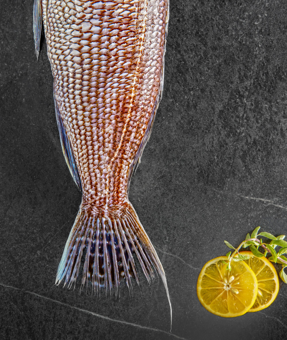 Fish Tail with Orange