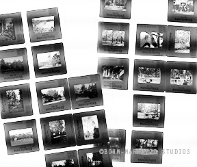 EKTACHROMES scan of old slides