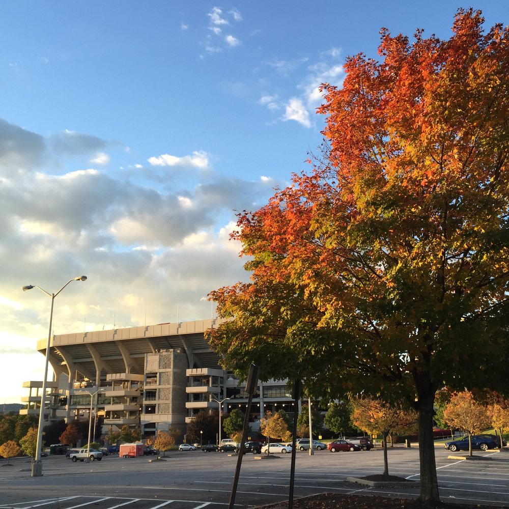 fall color lane stadium.jpg