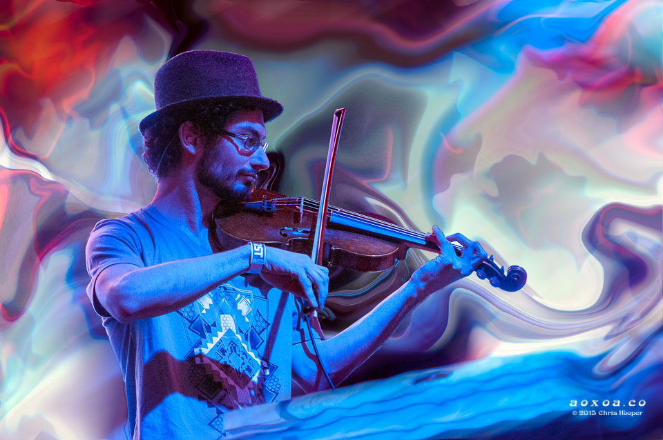 ilya-Goldberg-violen-emancipator-ensemble-aoxoa-euphoria-music-festival-2015.jpg