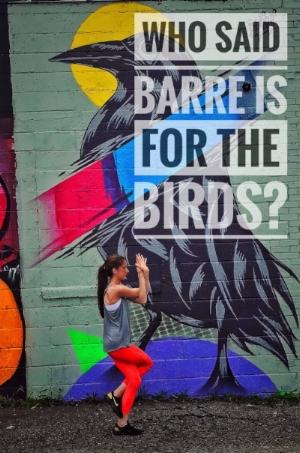 barre for birds.JPG