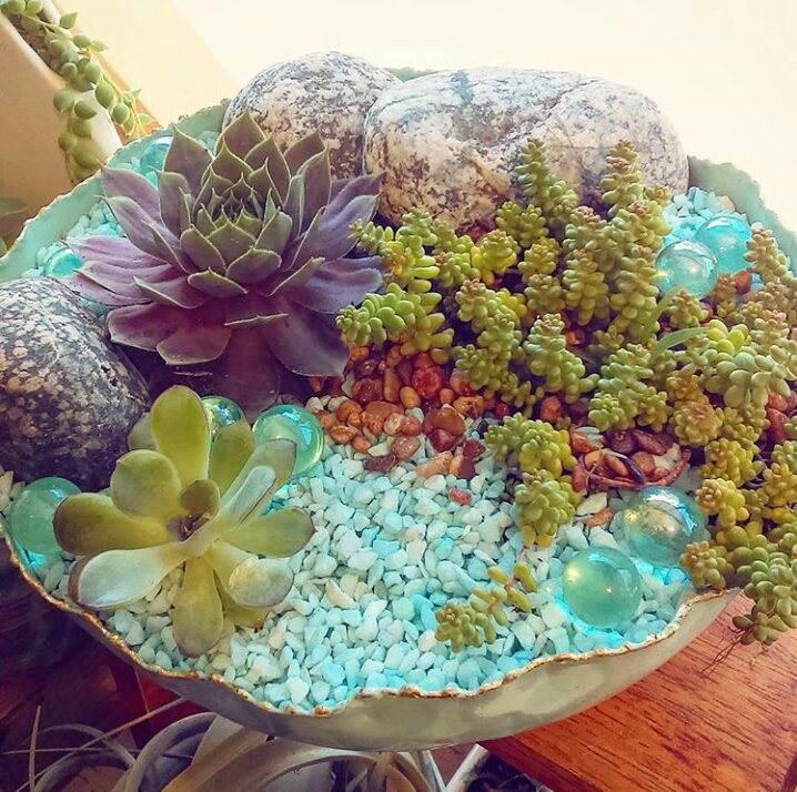 Fantasy Island Succulent Planter in Pounded Metal Vessel