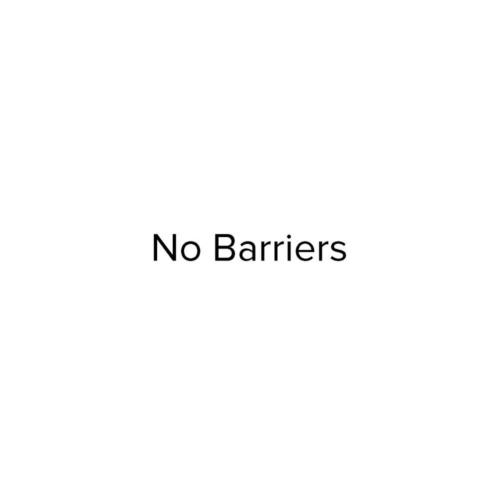 No Barriers Logo-01.png