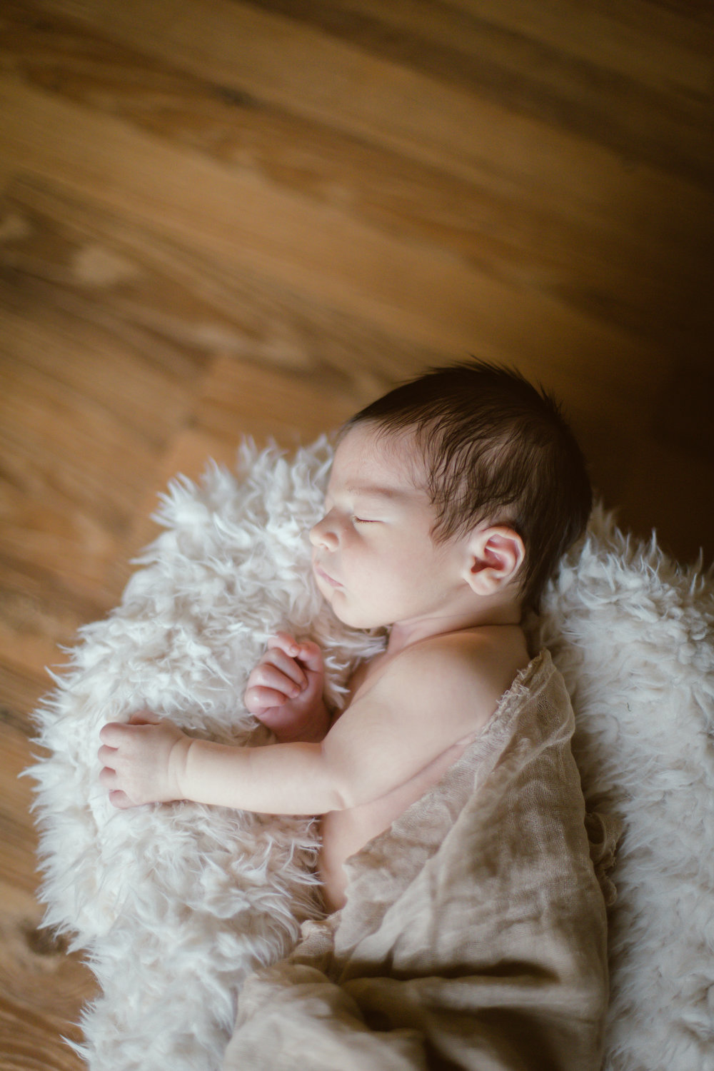 illinois newborn photography