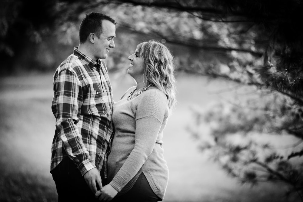 bloomington normal engagement photography