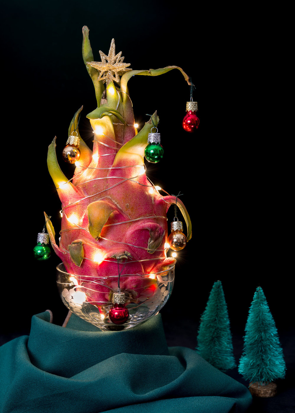 Dragon Fruit Christmas