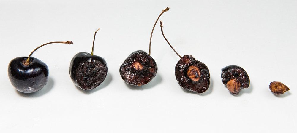 Black Cherry Descent