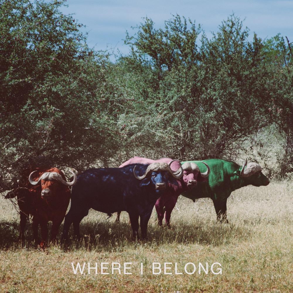 06 Where I Belong.jpg