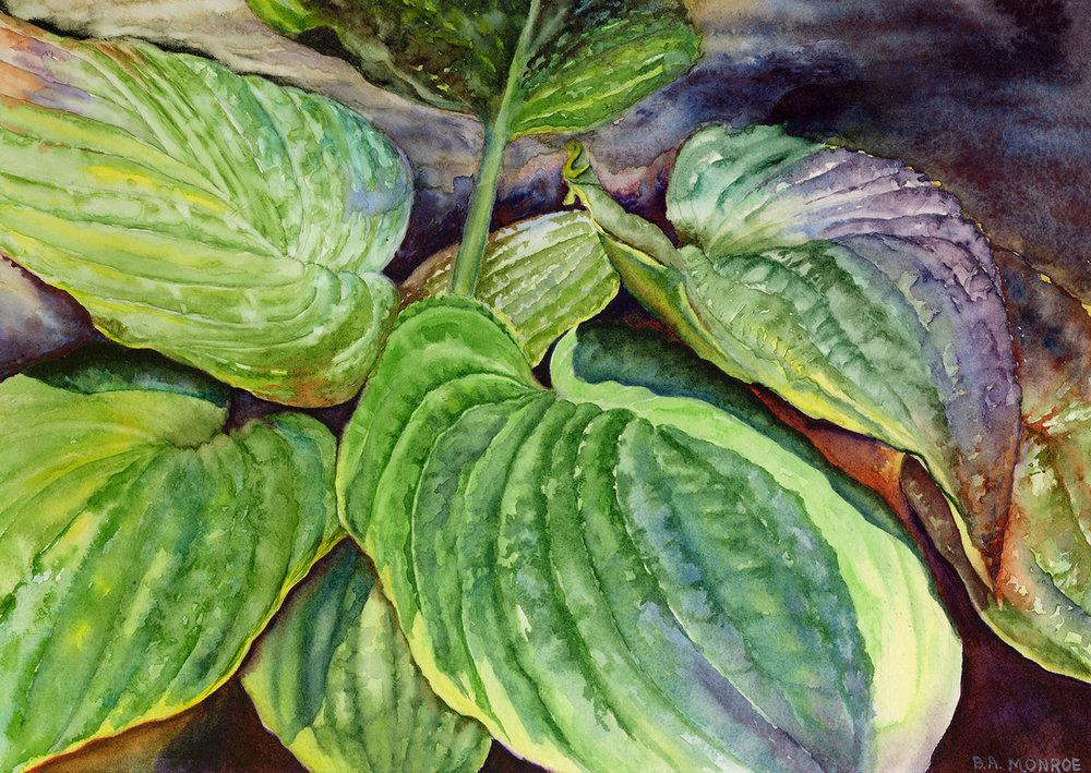 Sum & Substance, watercolor, Barbara Monroe