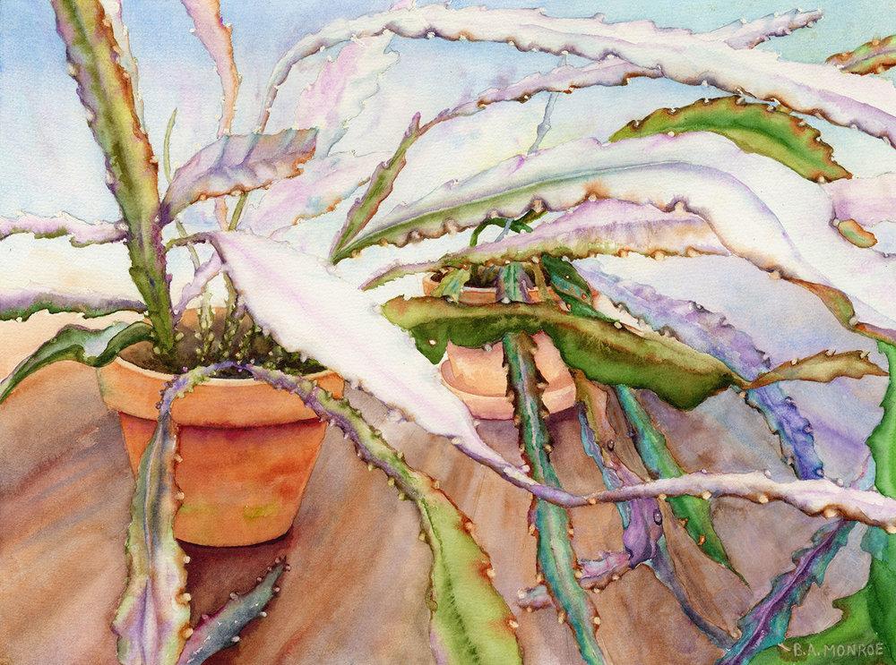 Winter Greenhouse, watercolor, Barbara Monroe