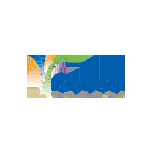 tfa-bvrton-color.png