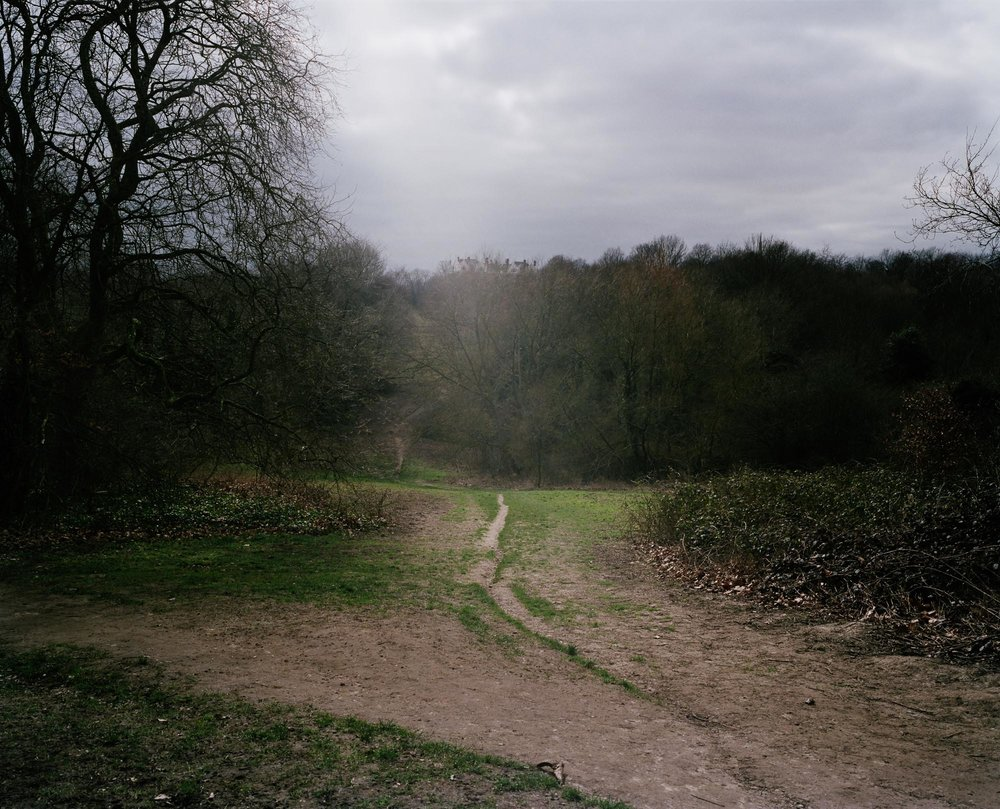 Heath 01.jpg