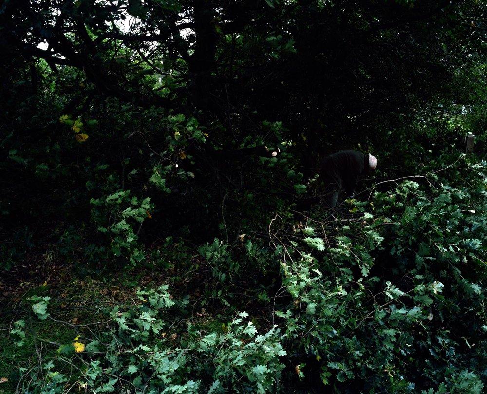 Heath 22.jpg