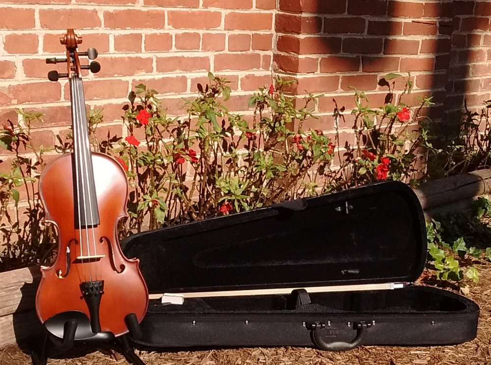 The Palatino VN300 Violin Outfit - Regularly Priced in our store at only $99!
