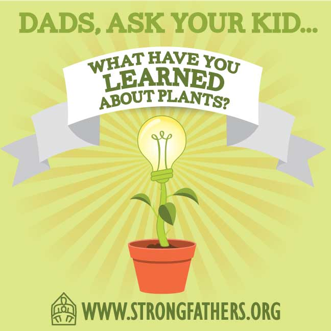 "Dads, ask your kid, ""What have you learned about plants?"""