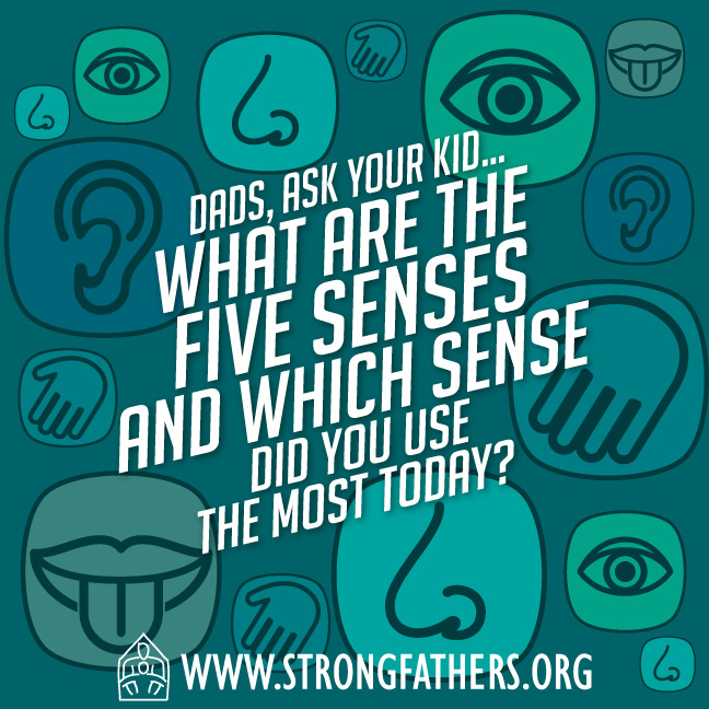 What are the 5 senses and which one did you use most today?