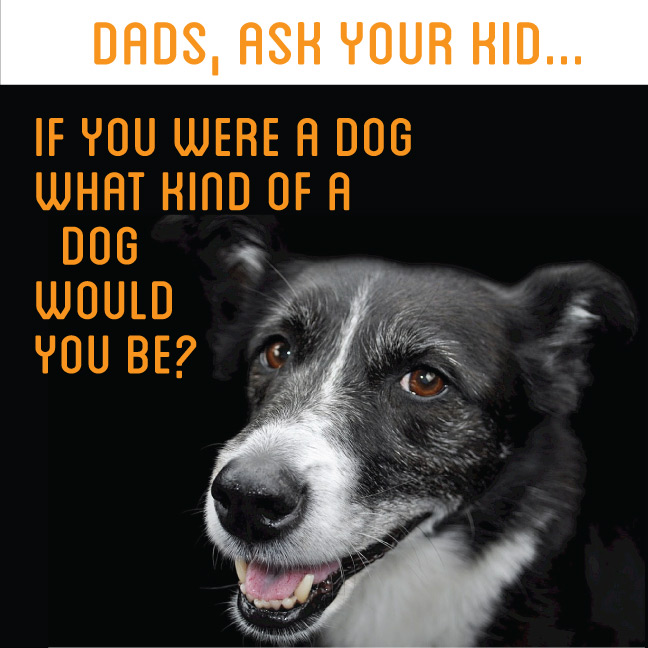If you were a dog, what kind of dog would you be?