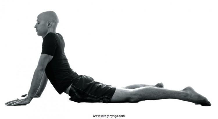 YinYoga-Seal-Pose.jpg