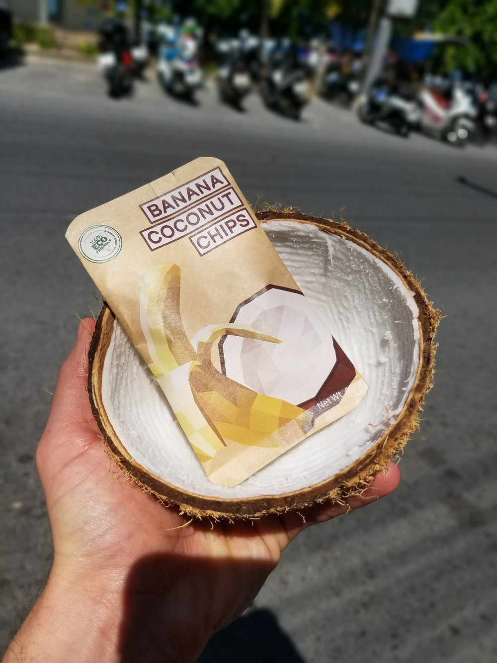 Coconut Chips in a Coconut